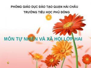 PHNG GIO DC O TO QUN HI CH