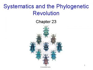 Systematics and the Phylogenetic Revolution Chapter 23 1