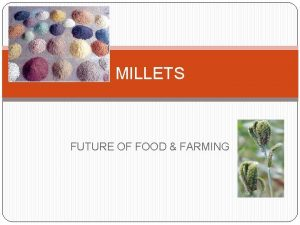 MILLETS FUTURE OF FOOD FARMING Water requirement Rainfall