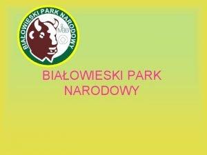 BIAOWIESKI PARK NARODOWY Ciekawostki Biaowieski Park Narodowy pooony
