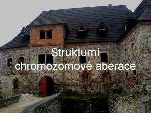 Strukturn chromozomov aberace Strukturn chromozomov aberace Zmny struktury