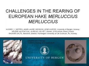 CHALLENGES IN THE REARING OF EUROPEAN HAKE MERLUCCIUS