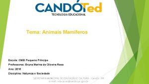 TECNOLOGIA EDUCACIONAL Tema Animais Mamferos Escola CMEI Pequeno