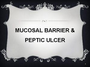 MUCOSAL BARRIER PEPTIC ULCER 1 GASTRIC MUOSAL BARRIER
