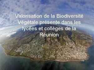 Valorisation de la Biodiversit Vgtale prsente dans les
