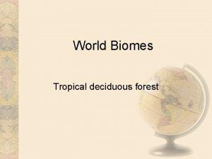 World Biomes Tropical deciduous forest Introduction Tropical deciduous