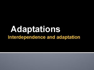 Adaptations Interdependence and adaptation Summary of Specification Adaptations