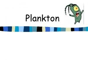 Plankton What is Plankton n Animals and plants