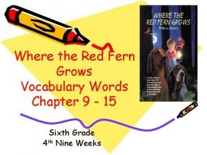 Where the Red Fern Grows Vocabulary Words Chapter