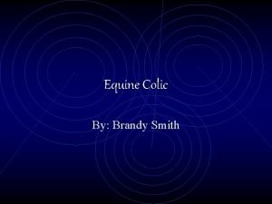 Equine Colic By Brandy Smith Facts About Equine