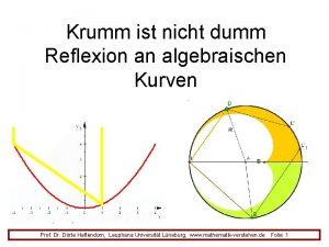 Krumm ist nicht dumm Reflexion an algebraischen Kurven