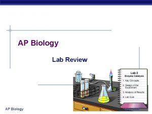 AP Biology Lab Review AP Biology 2004 2005