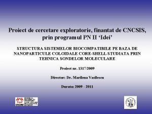 Proiect de cercetare exploratorie finantat de CNCSIS prin