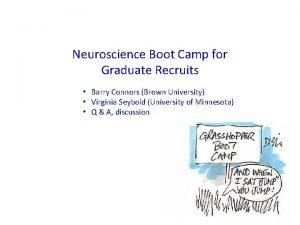 Neuroscience Boot Camp for Graduate Recruits Barry Connors