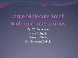 Large Molecule Small Molecule Interactions By C J