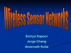 Somya Kapoor Jorge Chang Amarnath Kolla 1 Agenda