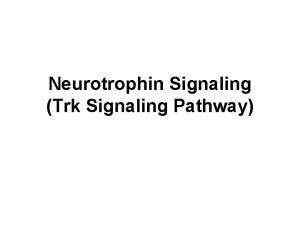 Neurotrophin Signaling Trk Signaling Pathway Neurotrophins The neurotrophins