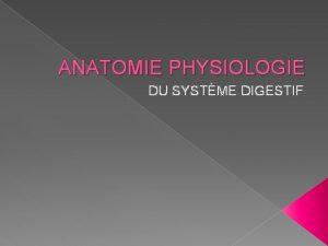ANATOMIE PHYSIOLOGIE DU SYSTME DIGESTIF ANATOMIE GENERALITES SYSTME