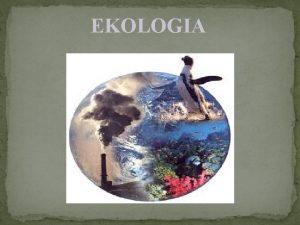 EKOLOGIA Co to jest ekologia cieki nieszczelna kanalizacja
