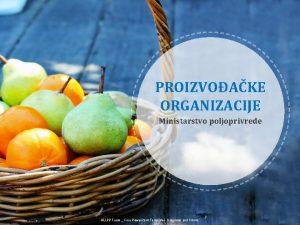 PROIZVOAKE ORGANIZACIJE Ministarstvo poljoprivrede ALLPPT com Free Power