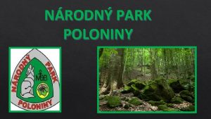 NRODN PARK POLONINY nrodn park Poloniny vznikol 1