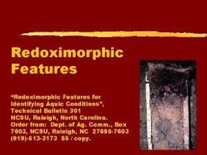 Redoximorphic Features Redoximorphic Features for Identifying Aquic Conditions