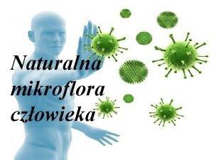 Naturalna mikroflora czowieka Drobnoustroje zasiedlaj organizm czowieka od