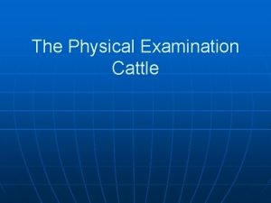 The Physical Examination Cattle The Clinical Examination Patient