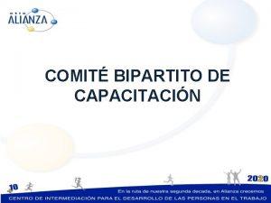 COMIT BIPARTITO DE CAPACITACIN Comit Bipartito Segn indica