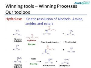 Winning tools Winning Processes Our toolbox Hydrolase Kinetic