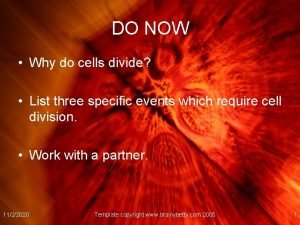 DO NOW Why do cells divide List three