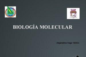 BIOLOGA MOLECULAR Alejandrina Vega 192933 Tema 4 2