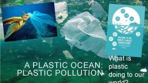 What is A PLASTIC OCEAN plastic PLASTIC POLLUTION