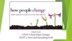 Week 1112 FRUIT 1 Real Heart Change FRUIT