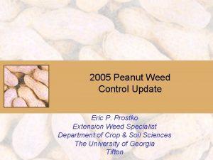 2005 Peanut Weed Control Update Eric P Prostko