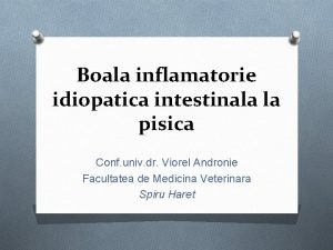 Boala inflamatorie idiopatica intestinala la pisica Conf univ
