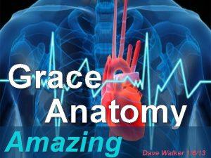 Grace Anatomy Amazing Dave Walker 1613 Mark 6