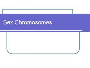 Sex Chromosomes Sex Chromosomes Xlinked Traits Possible genotypes