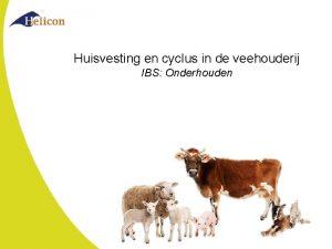 Huisvesting en cyclus in de veehouderij IBS Onderhouden