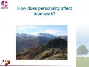 How does personality affect teamwork How does personality