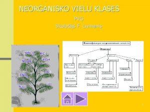 NEORGANISKO VIELU KLASES PV Skolotjs F Livmanis 1