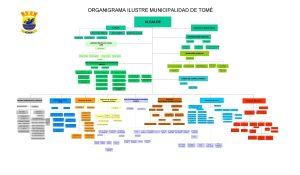 ORGANIGRAMA ILUSTRE MUNICIPALIDAD DE TOM ALCALDE CONCEJO MUNICIPAL