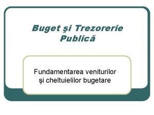 Buget i Trezorerie Public Fundamentarea veniturilor i cheltuielilor