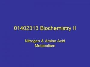 01402313 Biochemistry II Nitrogen Amino Acid Metabolism 1