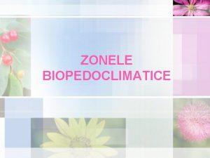 ZONELE BIOPEDOCLIMATICE NOIUNI NOI Zon biopedoclimatic fie a