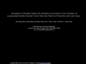 Abrogation of Nuclear FactorB Activation Is Involved in