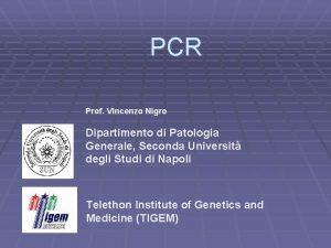 PCR Prof Vincenzo Nigro Dipartimento di Patologia Generale