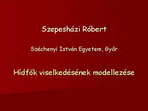 Szepeshzi Rbert Szchenyi Istvn Egyetem Gyr Hdfk viselkedsnek