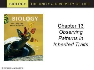 Chapter 13 Observing Patterns in Inherited Traits Cengage