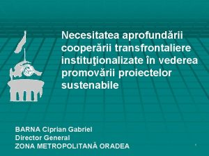 Necesitatea aprofundrii cooperrii transfrontaliere instituionalizate n vederea promovrii